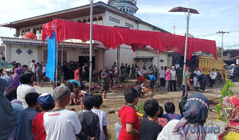Suasana penyembelihan hewan kurban di halaman Masjid Al Hijriah Siteba Padang, (20/7). (Foto : Arzil)