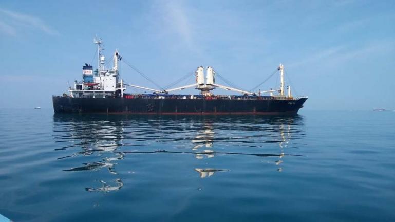 Dua Kapal Kargo Bijih Besi Kembali Berlayar
