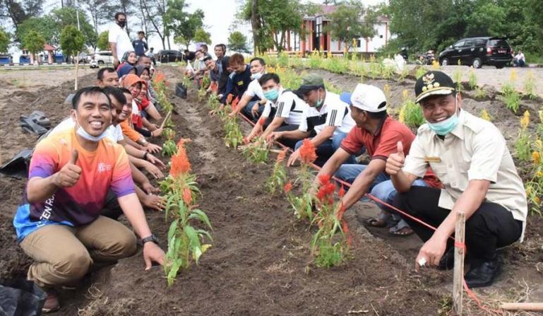 Wali Kota Pariaman, Genius Umar ikut menanam bunga bersama jajaran Dinas Parbud di taman bunga Pantai Kata, Rabu (13/1). (Dok : Istimewa)