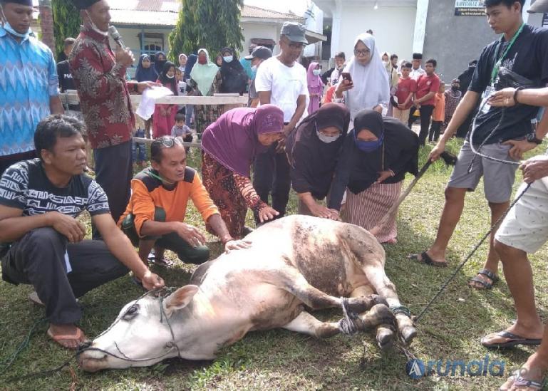 Panitia kurban Musala Rahmatan Lil Alamin saat akan menyembelih hewan kurban di halaman musala, Selasa pagi (20/7). (Foto : Derizon)
