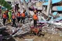 BNPB Mencatat Korban Gempa Bumi Terbanyak