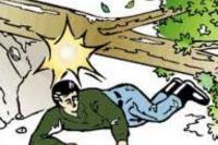 Pemotor yang Tewas Tertimpa Pohon Itu Ternyata Mahasiswa Unand