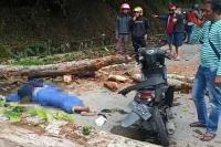 Seorang Pemotor Tewas Tertimpa Pohon